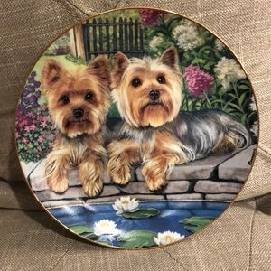 Yorkie Porcelain Collector Plate